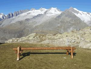 Holzbänckchen mit Aussicht auf den Aletschgletscher